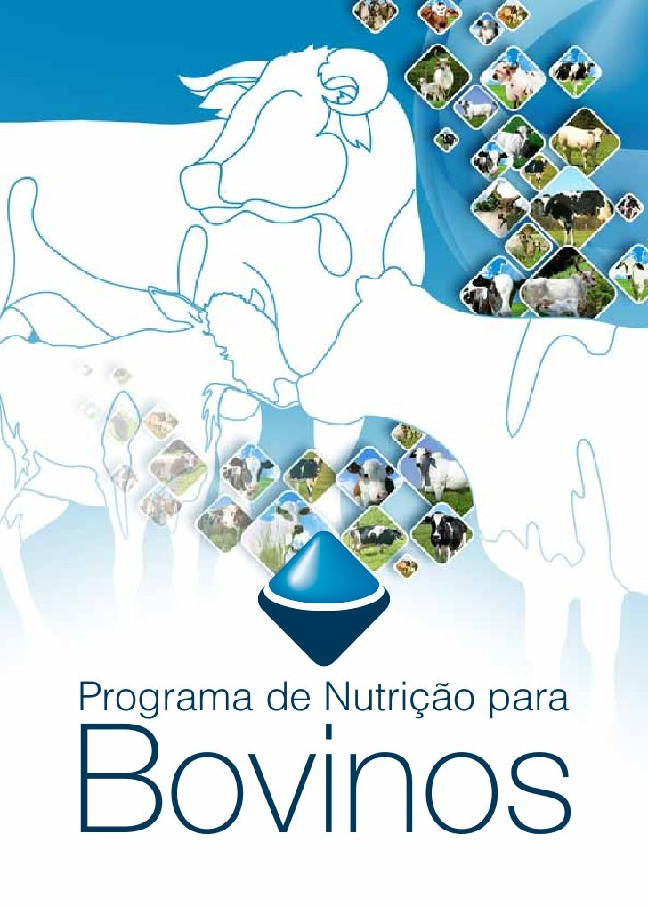Programa de Nutrição para   Bovinos