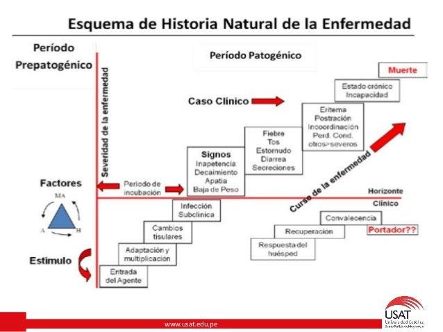 Pdf Salud Enfermedad Epidemiologia