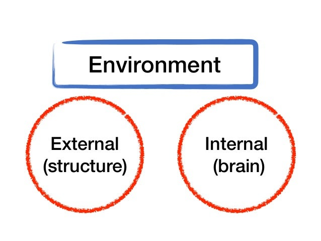 Five Components of an Organization's External Environment