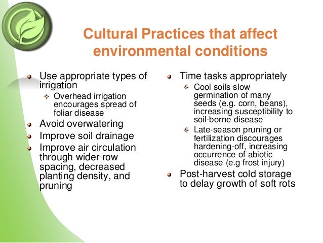 correct management of the environment minimises the spread of infection An individual with dementia who may be prescribed medication  and waste management: on  management of the environment minimizes the spread of infection.