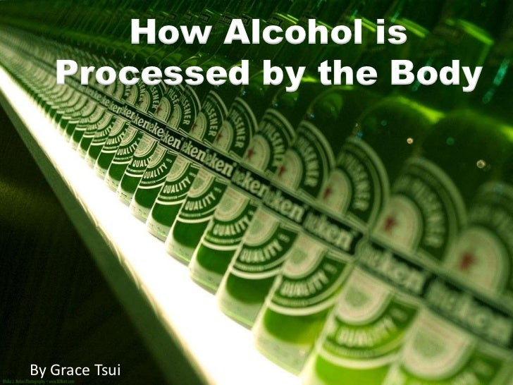 How Alcohol is Processed by the Body<br />By Grace Tsui<br />
