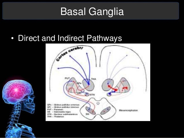 Parkinson's Disease Presentation