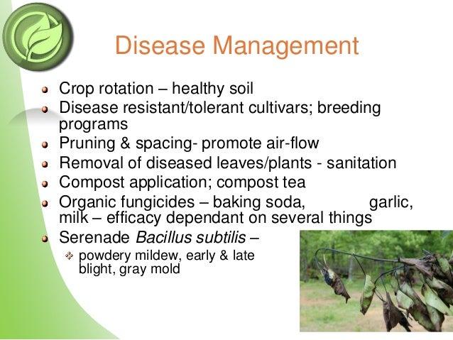 The Organic System