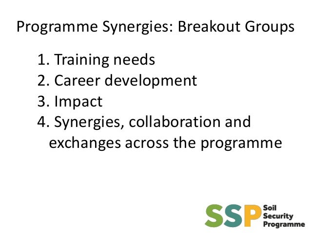Programme Synergies: Breakout Groups 1. Training needs 2. Career development 3. Impact 4. Synergies, collaboration and exc...