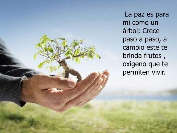 La paz es para mi como un  árbol; Crece  paso a paso, a cambio este te brinda frutos , oxigeno que te permiten vivir.<br />
