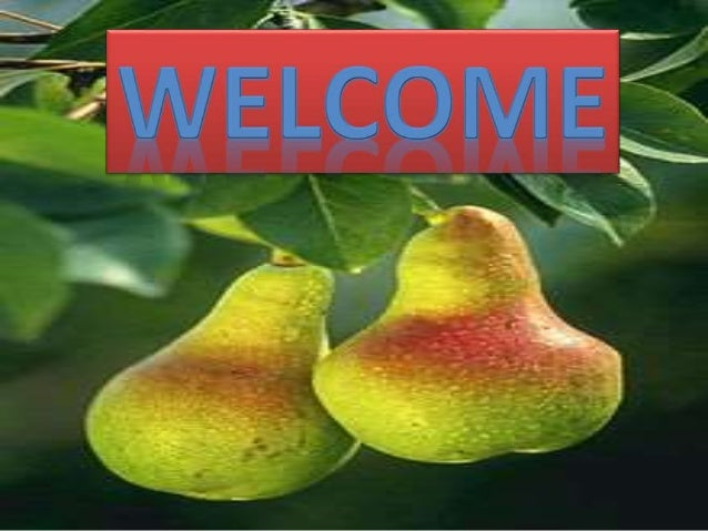 Assignment on breeding of pear Course title : Breeding of fruit crops Course No : FSC 506 Submitted by: Pawan Nagar M.SC.(...