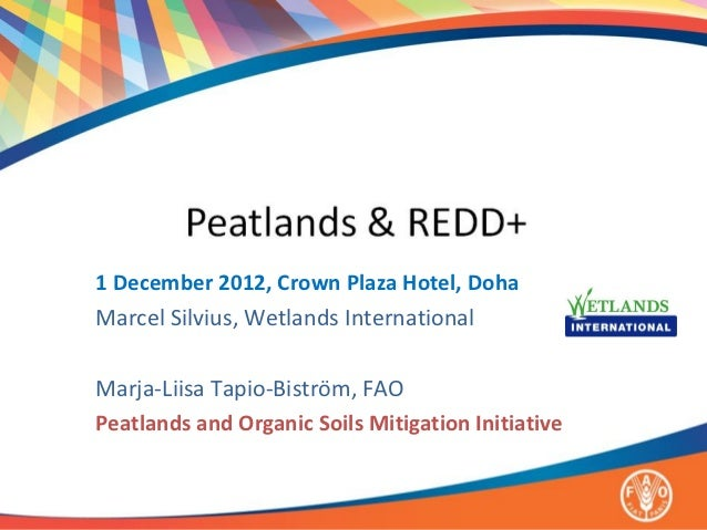 1 December 2012, Crown Plaza Hotel, DohaMarcel Silvius, Wetlands InternationalMarja-Liisa Tapio-Biström, FAOPeatlands and ...