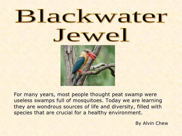 Blackwater Jewel For many years, most people thought peat swamp were useless swamps full of mosquitoes. Today we are learn...