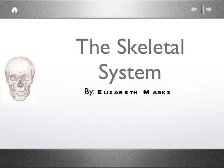 The Skeletal System By:  Elizabeth Marks