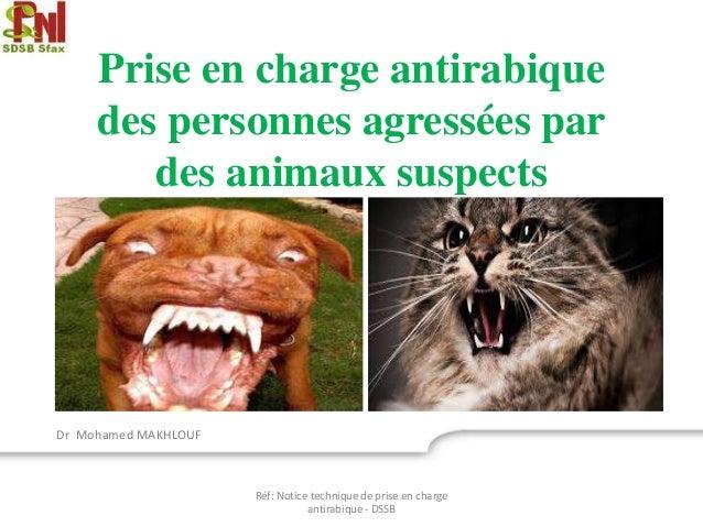 Prise en charge antirabique des personnes agressées par des animaux suspects Dr Mohamed MAKHLOUF Réf: Notice technique de ...