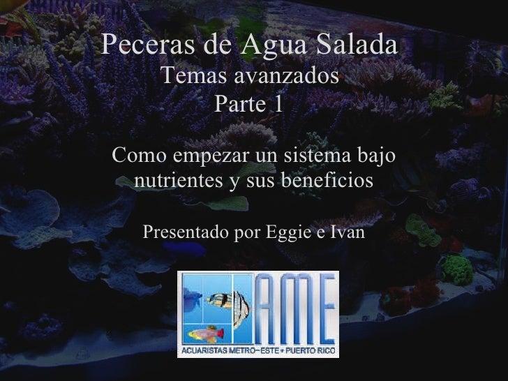 Peceras de Agua Salada Temas avanzados Parte 1 Como empezar un sistema bajo nutrientes y sus beneficios Presentado por Egg...