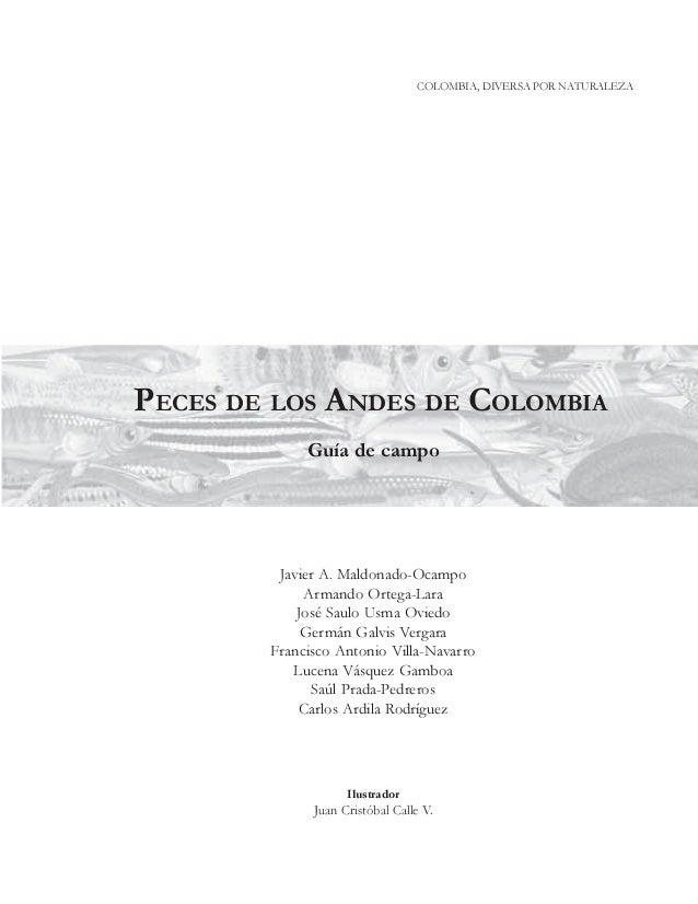 COLOMBIA, DIVERSA POR NATURALEZA  PECES DE LOS ANDES DE COLOMBIA Guía de campo  Javier A. Maldonado-Ocampo Armando Ortega-...