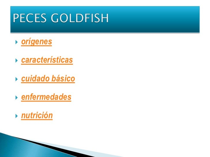 Peces goldfish for Alimento para goldfish