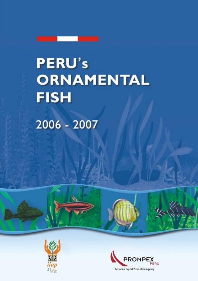 peces ornamentales peru
