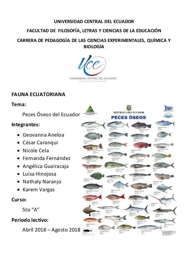 UNIVERSIDAD CENTRAL DEL ECUADOR FACULTAD DE FILOSOFÍA, LETRAS Y CIENCIAS DE LA EDUCACIÓN CARRERA DE PEDAGOGÍA DE LAS CIENC...