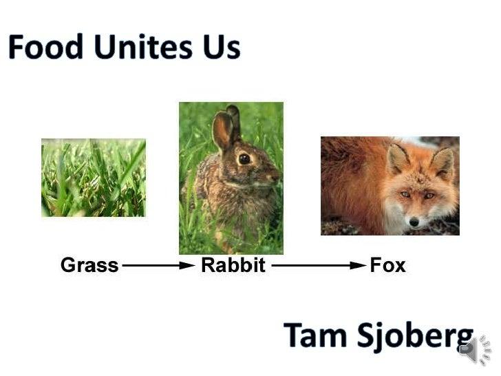 Food Unites Us<br />Tam Sjoberg<br />