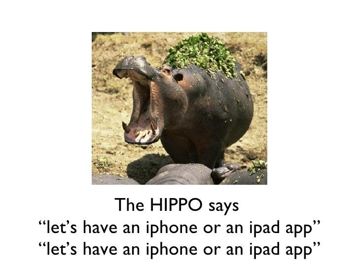 """The HIPPO says  """"let's have an iphone or an ipad app"""" """" let's have an iphone or an ipad app"""""""