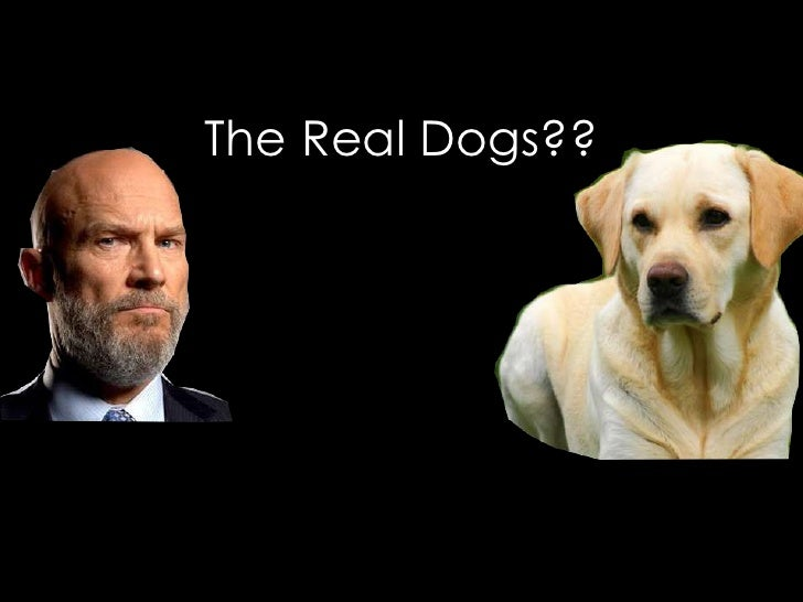 The Real Dogs??<br />