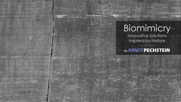 """Entrepreneurship Summit 2015: Dr. Arndt Pechstein """"Biomimicry Dr. Arndt Pechstein"""""""