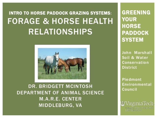 INTRO TO HORSE PADDOCK GRAZING SYSTEMS: FORAGE & HORSE HEALTH RELATIONSHIPS DR. BRIDGETT MCINTOSH DEPARTMENT OF ANIMAL SCI...