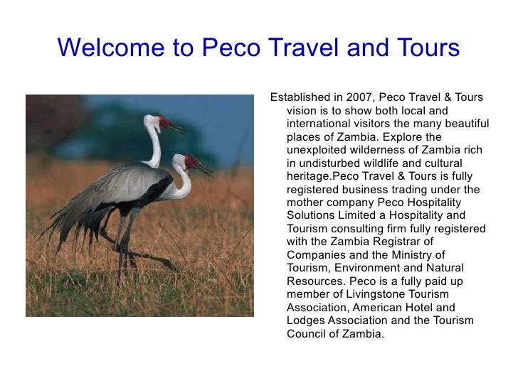 Welcome to Peco Travel and Tours Established in 2007, Peco Travel & Tours vision is to show both local and international v...