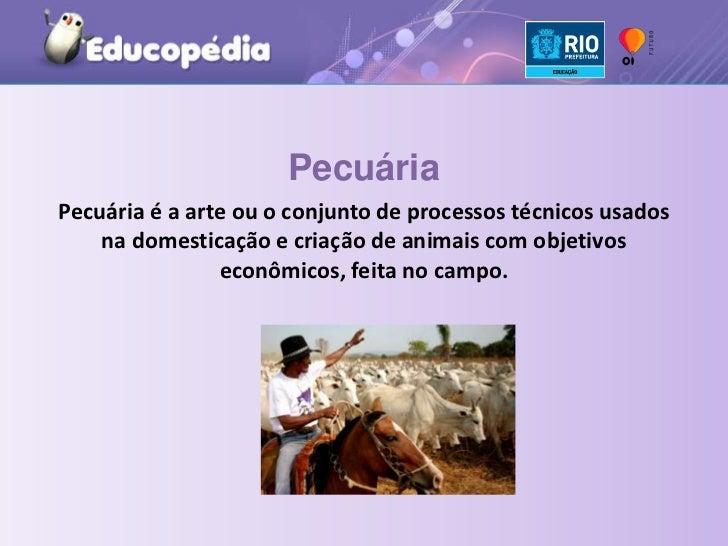 Pecuária<br />Pecuária é a arte ou o conjunto de processos técnicos usados na domesticação e criação de animais com objeti...