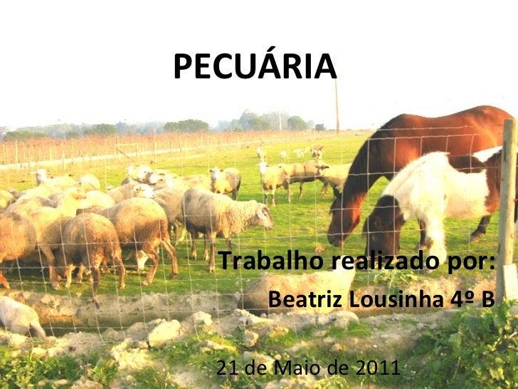 PECUÁRIA Trabalho realizado por: Beatriz Lousinha 4º B 21 de Maio de 2011