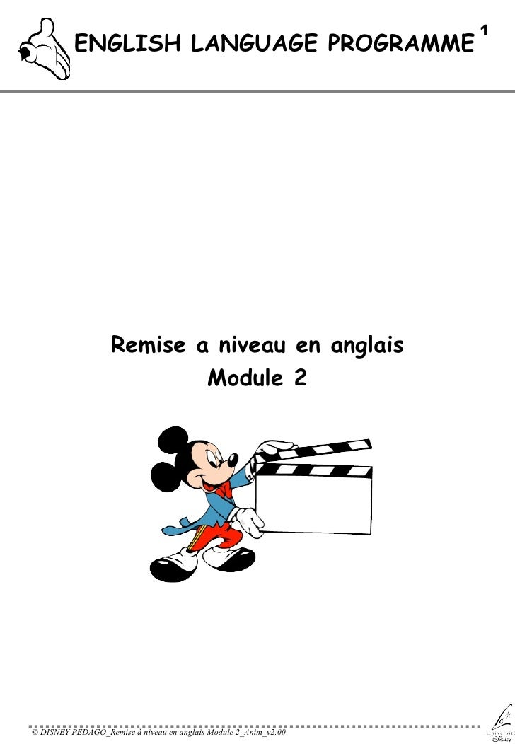 ENGLISH LANGUAGE PROGRAMME <ul><li>Remise a niveau en anglais </li></ul><ul><li>Module 2 </li></ul>