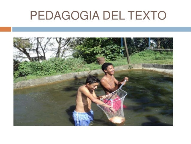 PEDAGOGIA DEL TEXTO