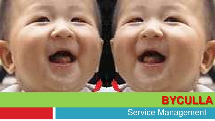 Pediatric Nursing Home At Byculla<br />Service Management<br />