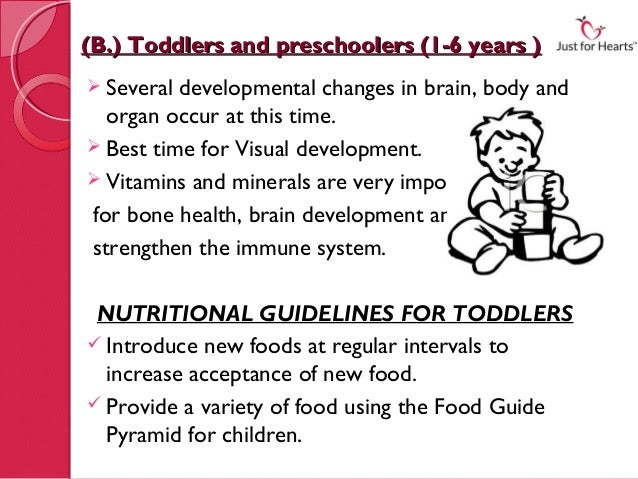 (B.) Toddlers and preschoolers (1-6 years ) Several developmental changes in brain, body and  organ occur at this time. ...