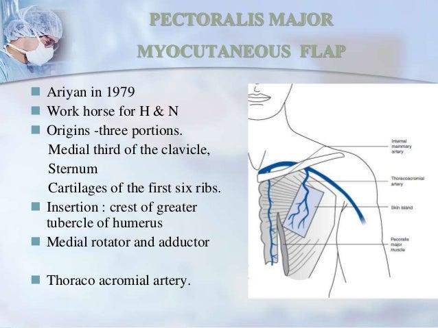 myocutaneous body flaps