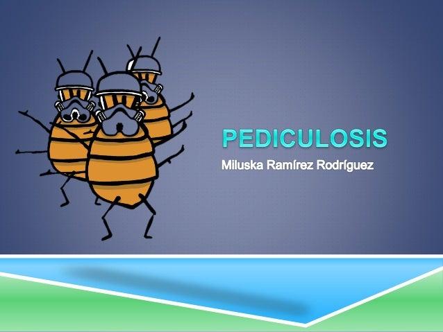  La pediculosis es una infestación cutánea producida por un insecto hematófago -el piojo- que parasita exclusivamente al ...
