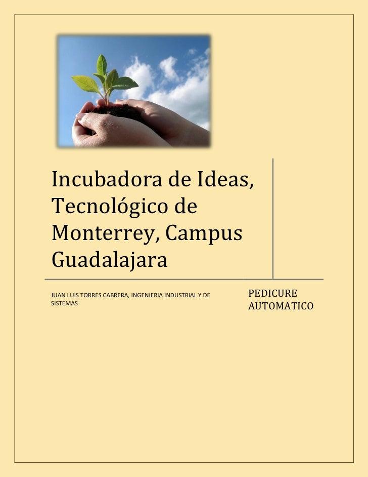 Incubadora de Ideas, Tecnológico de Monterrey, Campus Guadalajara                                                        P...