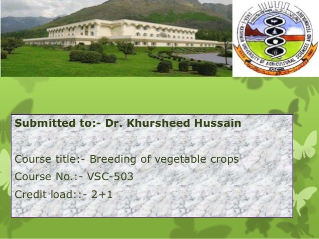 Submitted to:- Dr. Khursheed Hussain Course title:- Breeding of vegetable crops Course No.:- VSC-503 Credit load::- 2+1