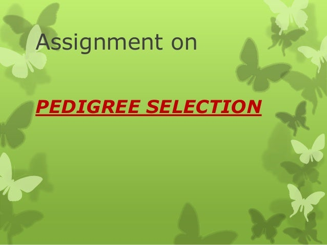 Assignment on PEDIGREE SELECTION