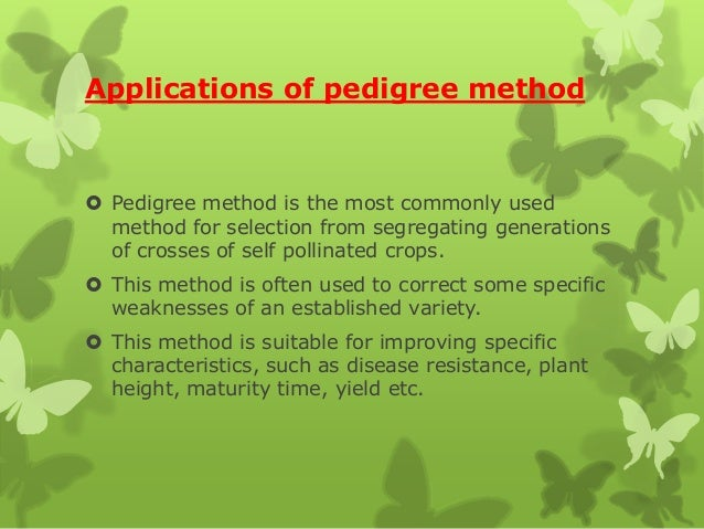 Applications of pedigree method  Pedigree method is the most commonly used method for selection from segregating generati...