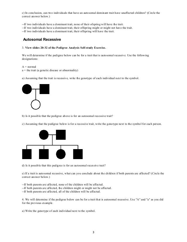 Introduction To Pedigree Charts Worksheet - introduction to ...