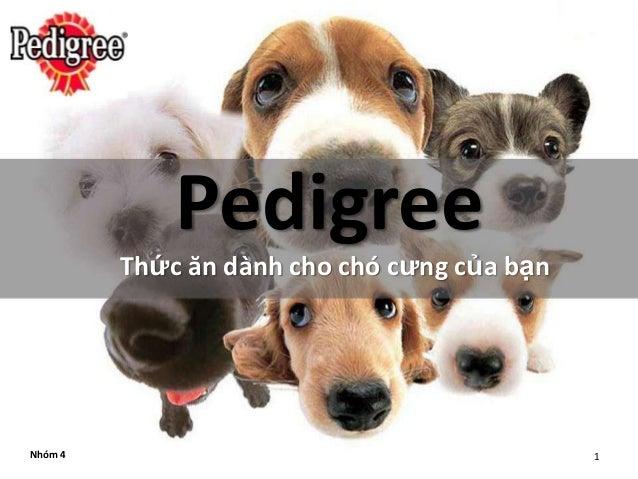 Pedigree         Thức ăn dành cho chó cưng của bạnNhóm 4                                       1