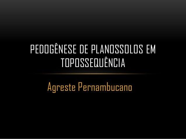 PEDOGÊNESE DE PLANOSSOLOS EM      TOPOSSEQUÊNCIA   Agreste Pernambucano