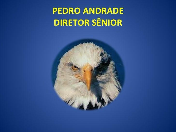 PEDRO ANDRADE DIRETOR SÊNIOR