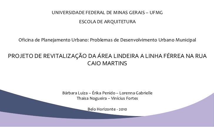 UNIVERSIDADE FEDERAL DE MINAS GERAIS – UFMG ESCOLA DE ARQUITETURA Oficina de Planejamento Urbano: Problemas de Desenvolvim...