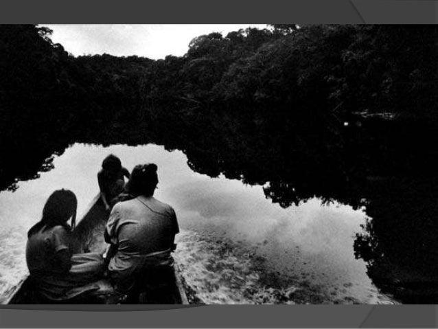 U_AMB - Fotógrafo Ambiental Nacional - Pedro martinelli