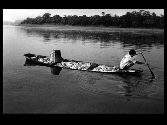 • Referências: • http://povosindigenas.com/pedro-martinelli/ • http://www.pedromartinelli.com.br/blog/saib a-quem-e-pedro-...
