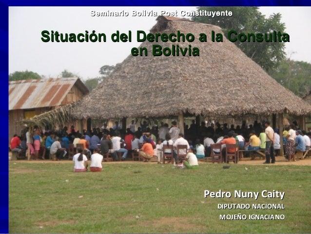 Seminario Bolivia Post ConstituyenteSeminario Bolivia Post Constituyente Situación del Derecho a la ConsultaSituación del ...