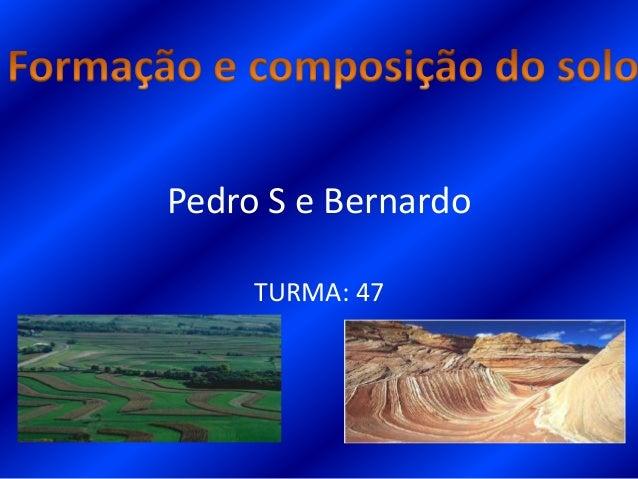 Pedro S e BernardoTURMA: 47