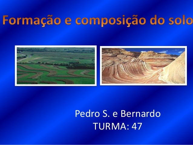 Pedro S. e BernardoTURMA: 47