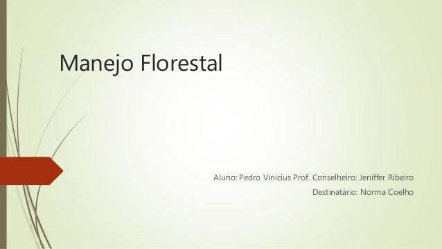 Manejo Florestal Aluno: Pedro Vinicius Prof. Conselheiro: Jeniffer Ribeiro Destinatário: Norma Coelho
