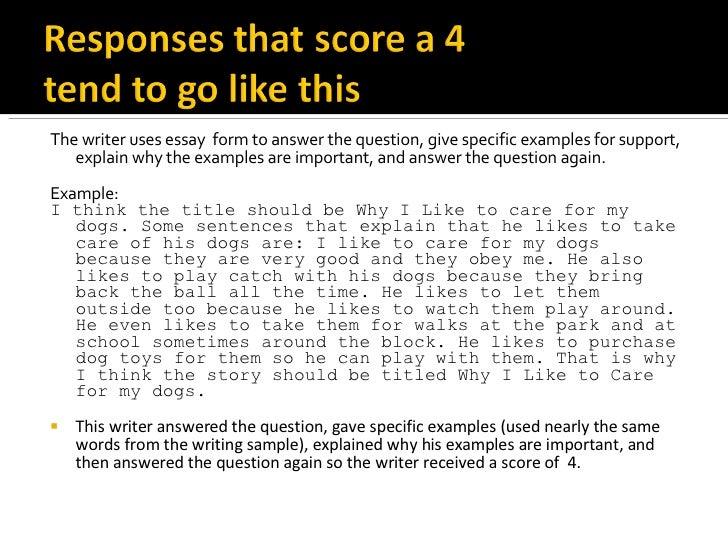 response essays examples literary essay examples samples  essay example literature essay sample example of a literary essay response essays examples