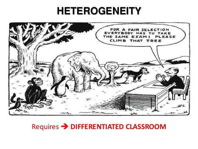what does differentiated instruction mean